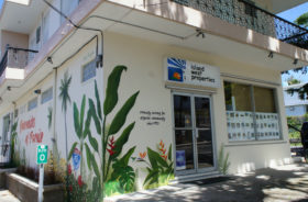 Puerto rico Real Estate Agent